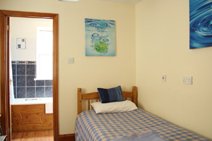 single room at bed and breakfast Bristol. White House Guest Rooms, Bristol